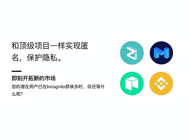 Incognito DEX 项目上币_page-0013
