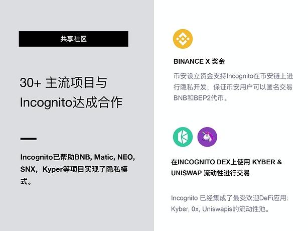 Incognito DEX 项目上币_page-0012